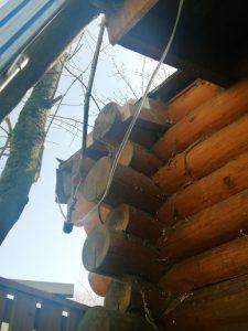 Ausbesserungsarbeiten am Dach der Baumsauna